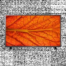 "Телевизор LED 32 "" LG 32LM637BPLB, Black"