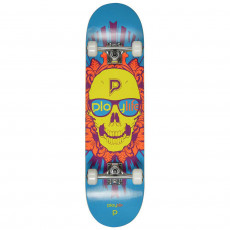 Skateboard PlayLife (Powerslide) Skullhead ( 880280 ), Черный/ Голубой