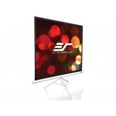 Ecran de proiectie Elite Screens T119NWS1